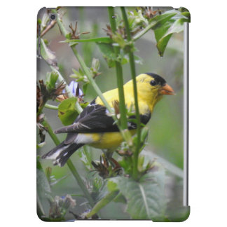 American Goldfinch iPad Air Case