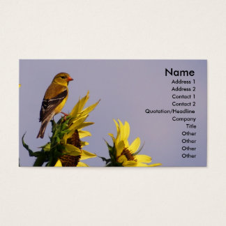 American Goldfinch on Sunflower Business Card