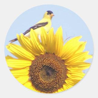 American Goldfinch on Sunflower Round Sticker