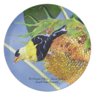 American Goldfinch Plates