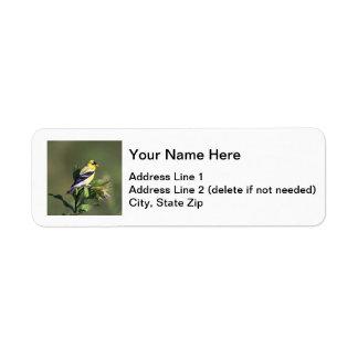 American Goldfinch Return Address Label