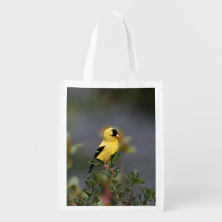 American goldfinch reusable grocery bag