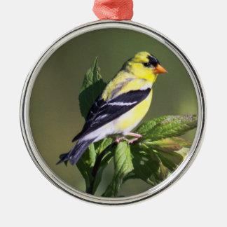 American Goldfinch Silver-Colored Round Ornament