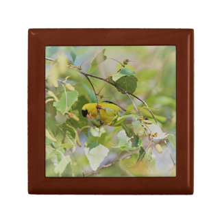 American goldfinch trinket boxes
