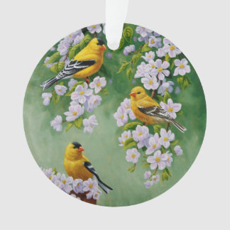 American Goldfinches & Pink Apple Blossoms