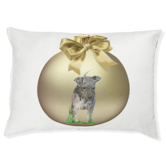 American Hairless Terrier Pet Bed