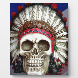 American Indian Skull With Feathers Plaque