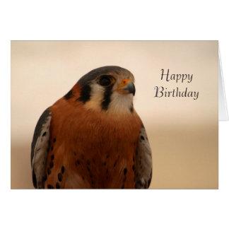 American Kestrel Birthday Card