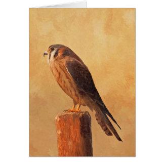 American Kestrel Card