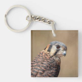 American Kestrel Keychain
