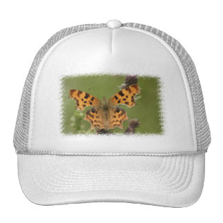 American Lady Butterfly Baseball Hat