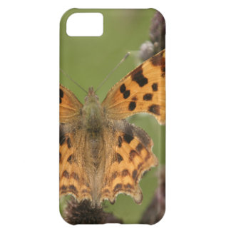 American Lady Butterfly iPhone 5C Cases