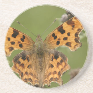 American Lady Butterfly Coaster