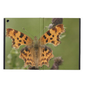 American Lady Butterfly iPad Air Cover