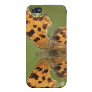 American Lady Butterfly iPhone 4 Case