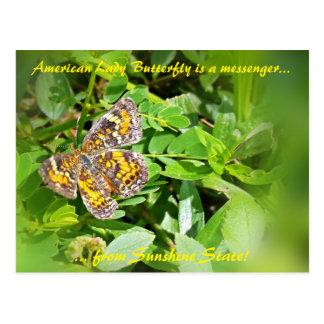 American Lady Butterfly is a messenger,FL postcard
