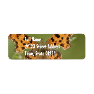 American Lady Butterfly Mailing Label