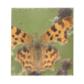 American Lady Butterfly Notepad