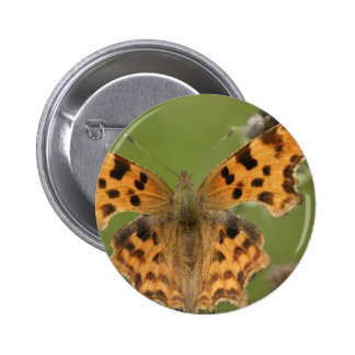 American Lady Butterfly Round Button