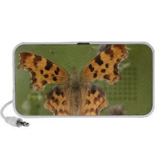 American Lady Butterfly Speakers