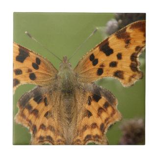 American Lady Butterfly Tile