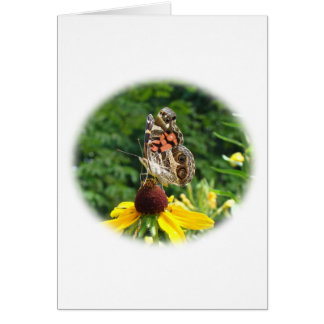 American Lady Butterfly - Vanessa virginiensis Greeting Card