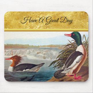American mallard ducks in a river swimming mouse pad