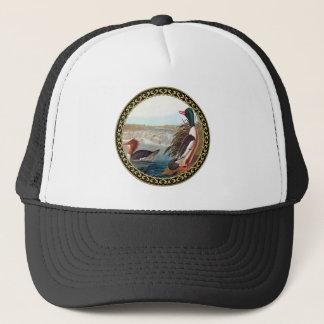 American mallard ducks in a river swimming trucker hat