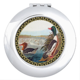 American mallard ducks in a river swimming vanity mirror