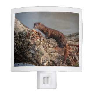 American Mink Night Light