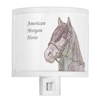 American Morgan Horse Night light