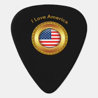 American nation flag with a gold frame guitar pick