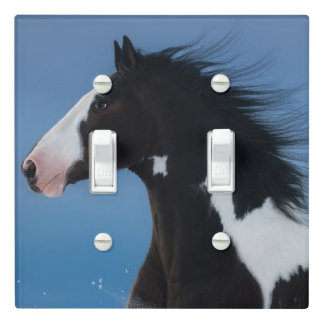 American paint horse light switch cover