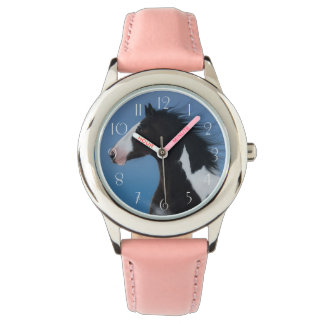American paint horse watch