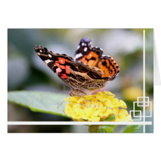 American Painted Lady Butterfly Blank Notecard Greeting Card