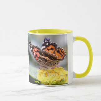 American Painted Lady Butterfly Lifecycle Coffee M Mug