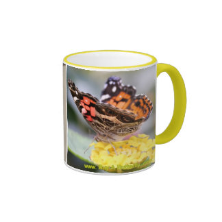 American Painted Lady Butterfly Lifecycle Coffee M Ringer Coffee Mug