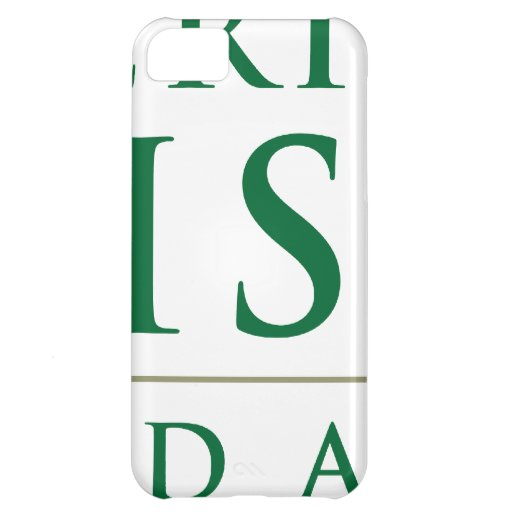 American Pakistan Foundation Merchandise iPhone 5C Covers
