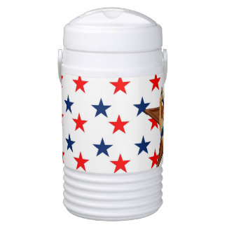 American pinup star drinks cooler