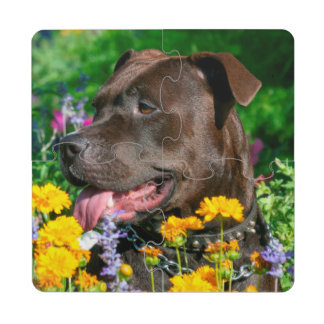American Pit Bull in field of flowers Puzzle Coaster