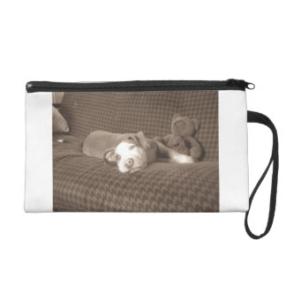 American_Pit_Bull_Terrier_and_teddy_bear_on_couch. Wristlet