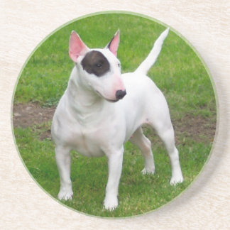 American Pit Bull Terrier Dog Coaster