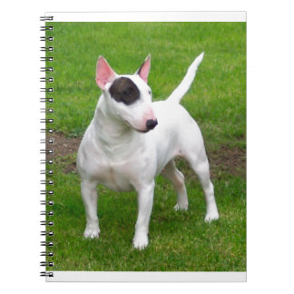 American Pit Bull Terrier Dog Spiral Notebook