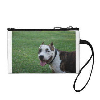 american pit bull terrier smiling coin purse