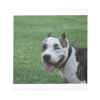 american pit bull terrier smiling notepad