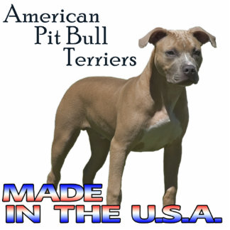 American Pit Bull Terriers  Paper Sculpture Standing Photo Sculpture