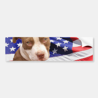 American Pitbull puppy Bumper Sticker
