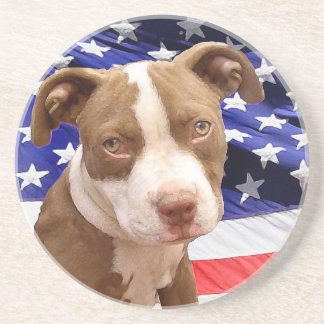 American Pitbull puppy Coaster