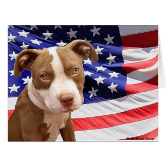 American Pitbull Terrier pup Big Greeting Card