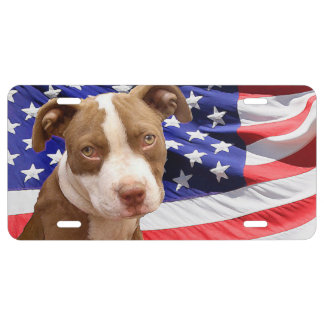 American Pitbull Terrier pup License Plate